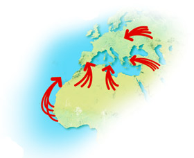 mapeurope